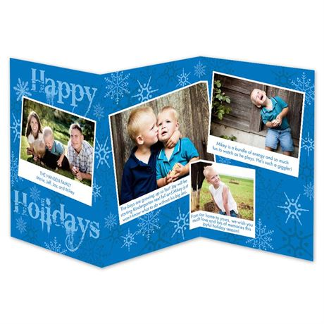 Snowy Holiday Storyline Photo Holiday Card