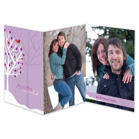 Rosy World Photo Holiday Card
