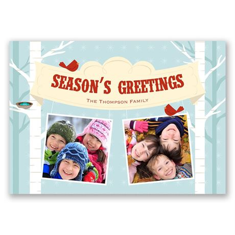 Bright Birds Photo Holiday Card