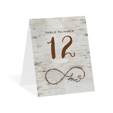 Love for Infinity Table Number Card