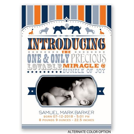 Circus Celebration - Mini Birth Announcement