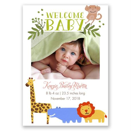 Safari Party Birth Announcement