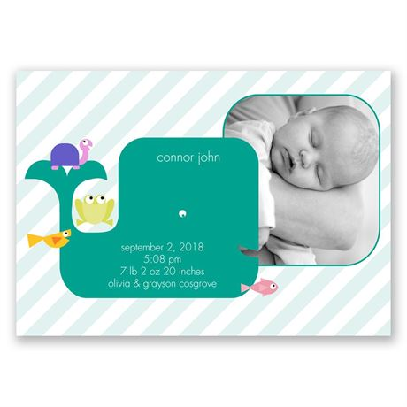Whale Ride - Birth Announcement