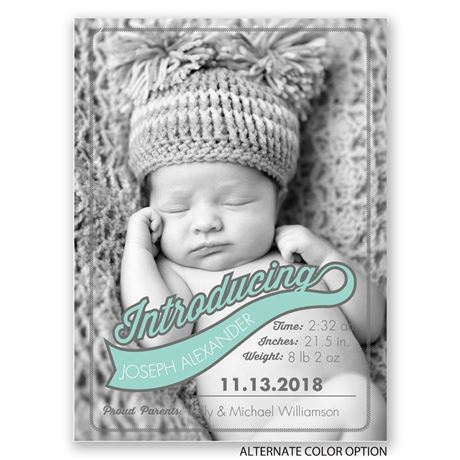Sweet Intro - Petite Birth Announcement
