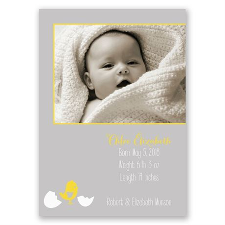 Little Chick - Birth Announcement