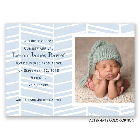 So Lovable - Mini Birth Announcement