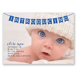 INTRODUCING - Mini Birth Announcement