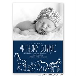 Animal Sketch - Birth Announcement
