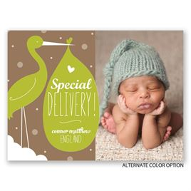 Stork and Baby - Petite Birth Announcement
